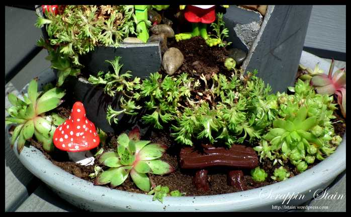 Broken Flowerpot - Frog Garden 8