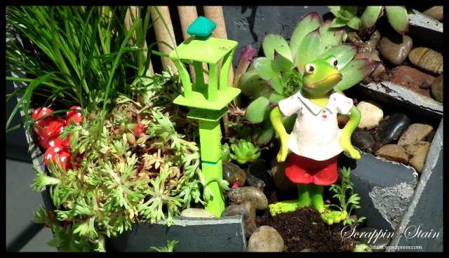 Broken Flowerpot - Frog Garden 9